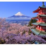 JAPAN (0)