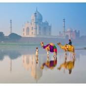 India (49)