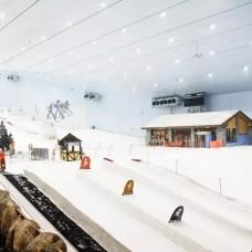 Ski Dubai by TapMyTrip