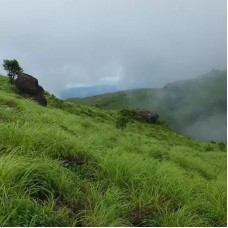 Trek To The Highest Peak Of Coorg - Tadiyandamol by TapMyTrip