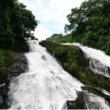 Athirappilly Falls Day Tour from Cochin by TapMyTrip