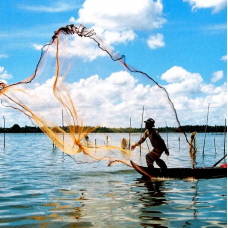 Tam Giang Lagoon Private Half Day Tour with Seafood Dinner by TapMyTrip
