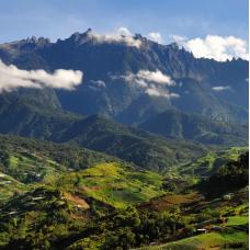 Kinabalu Park & Poring Hot Spring by TapMyTrip