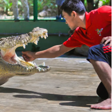Crocodile Adventureland Langkawi Admission Ticket by TapMyTrip