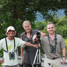 Langkawi Bird Watching Join-In Tour with Hotel Transfer by TapMyTrip