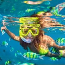 Nusa Lembongan Snorkeling & Mangrove Day Tour by TapMyTrip