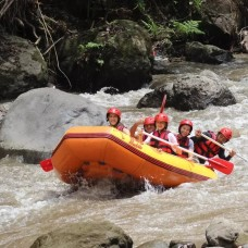 Ayung White Water Rafting with Red Paddles by TapMyTrip