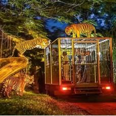 Bali Safari and Marine Park by TapMyTrip