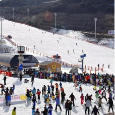 Eden Valley Ski Resort Day Trip with Roundtrip Transfers from Busan by TapMyTrip