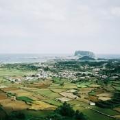 Jeju (8)