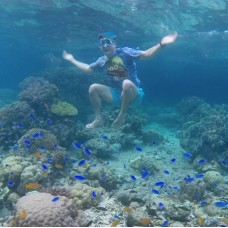 Pescador Island Hopping Private Tour with Boat Charter in Moalboal by TapMyTrip