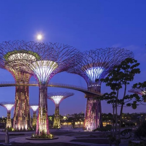 Gardens by the Bay and OCBC Skyway by TapMyTrip