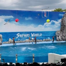 Safari World Ticket in Bangkok